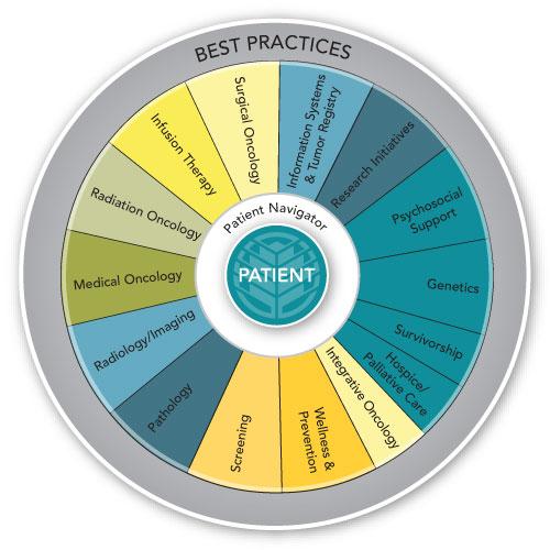 patient-navigator 3
