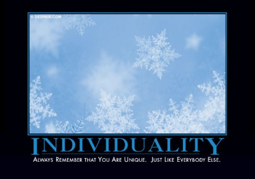 individualitydemotivator
